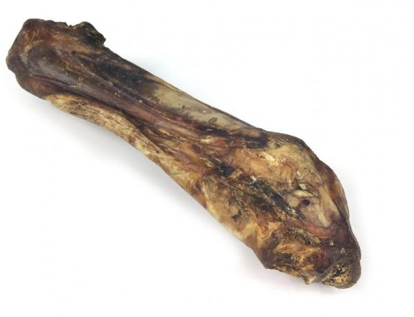 Pferde-Unterbein | Max Hamster | natürlich und gesund