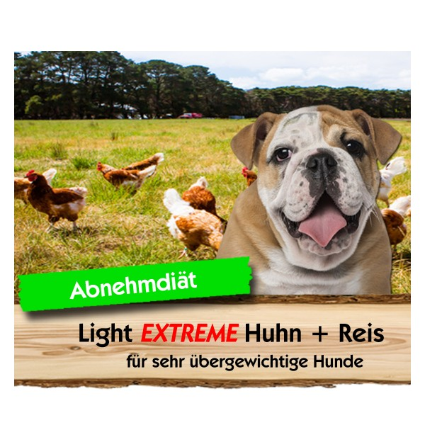 Light EXTREME Huhn + Reis