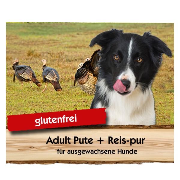 Adult Pute + Reis-pur