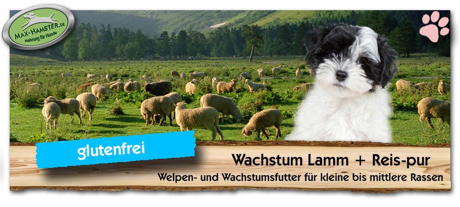 Welpenfutter-Wachstum-Lamm-Reis-Max-Hamster-pur