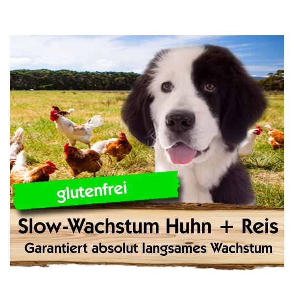 Slow Wachstum Huhn + Reis