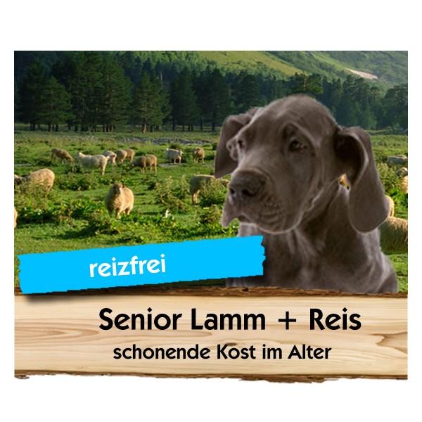 Senior Lamm + Reis