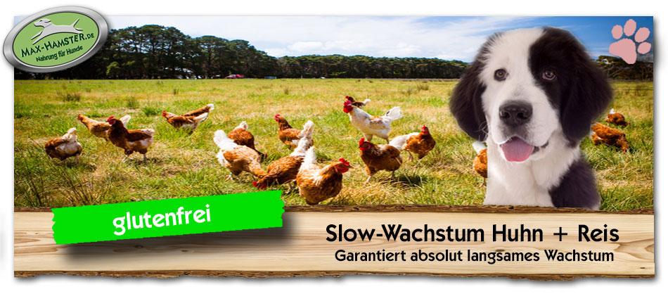 Welpenfutter-Slow-Wachstum-Huhn-Reis-Max-Hamster