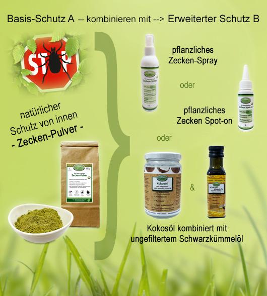 Zecken-Erklaerung-Max-Hamster