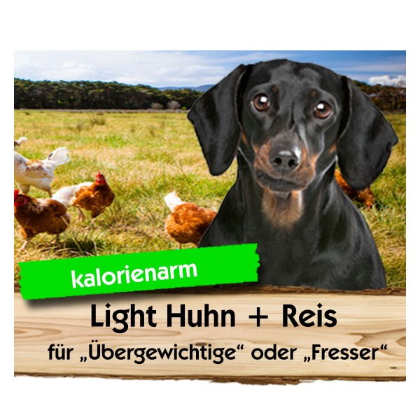 Light Huhn + Reis
