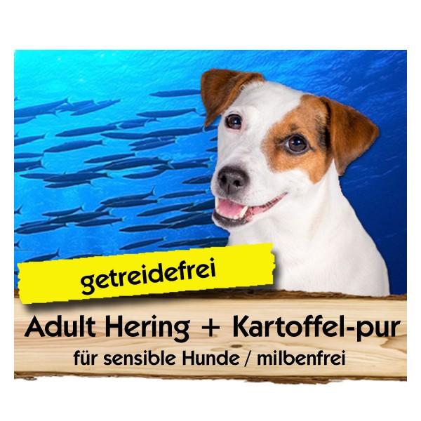 Adult Hering + Kartoffel-pur